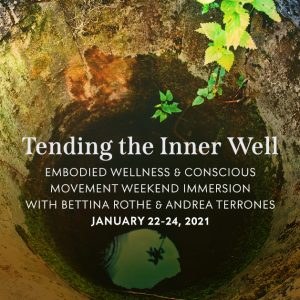Tending the Inner Well Embodied Wellness online immersion with Bettina Rothe flyer